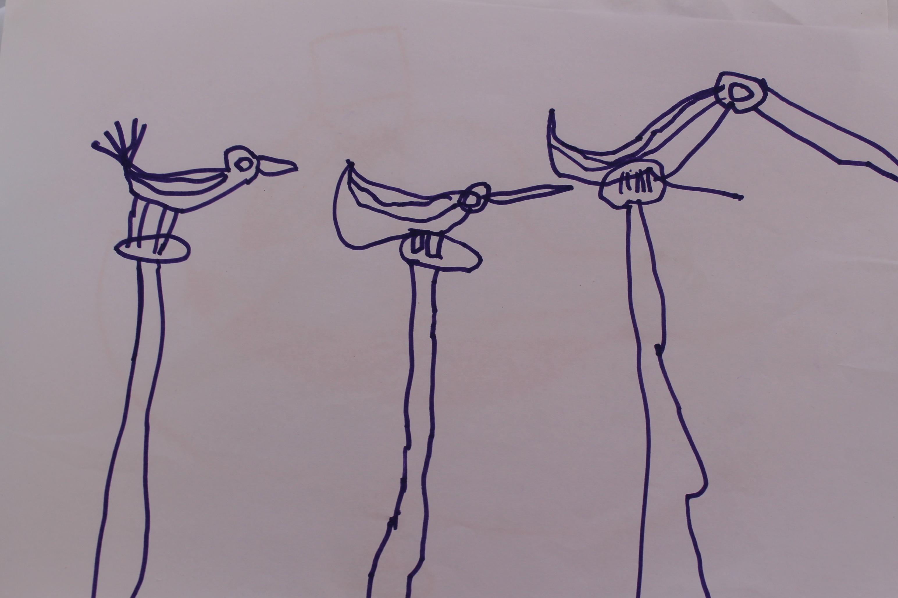 pelicanT